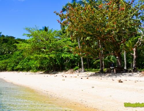 Capinahan Island
