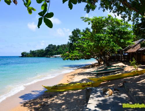 Coco Grove/Talahid Beach Resort
