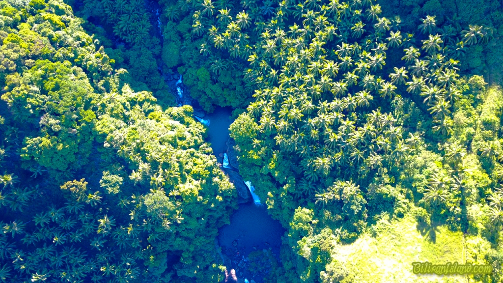 Aerial view of Tinago Waterfalls