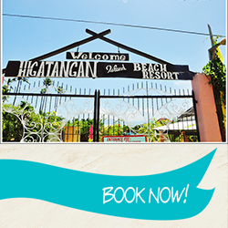 Book Now at Higatangan Island Beach Resort