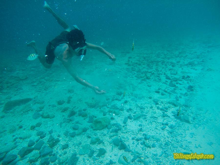 Diving in Sambawan