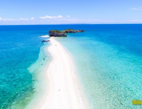 Carnaza, Lamanok & Sambawan Island Tour