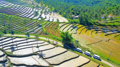 Scenic view of Sampao Rice Terraces in Almeria, Biliran during the tour of SGV & Co., Ernst & Young Philippines in Biliran province.